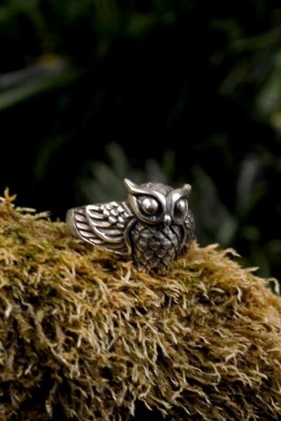 Hexen Ring Eule Aridia aus Silber